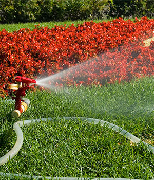 Servicios de jardiner a limpiezas gredos - Trabajo jardineria madrid ...