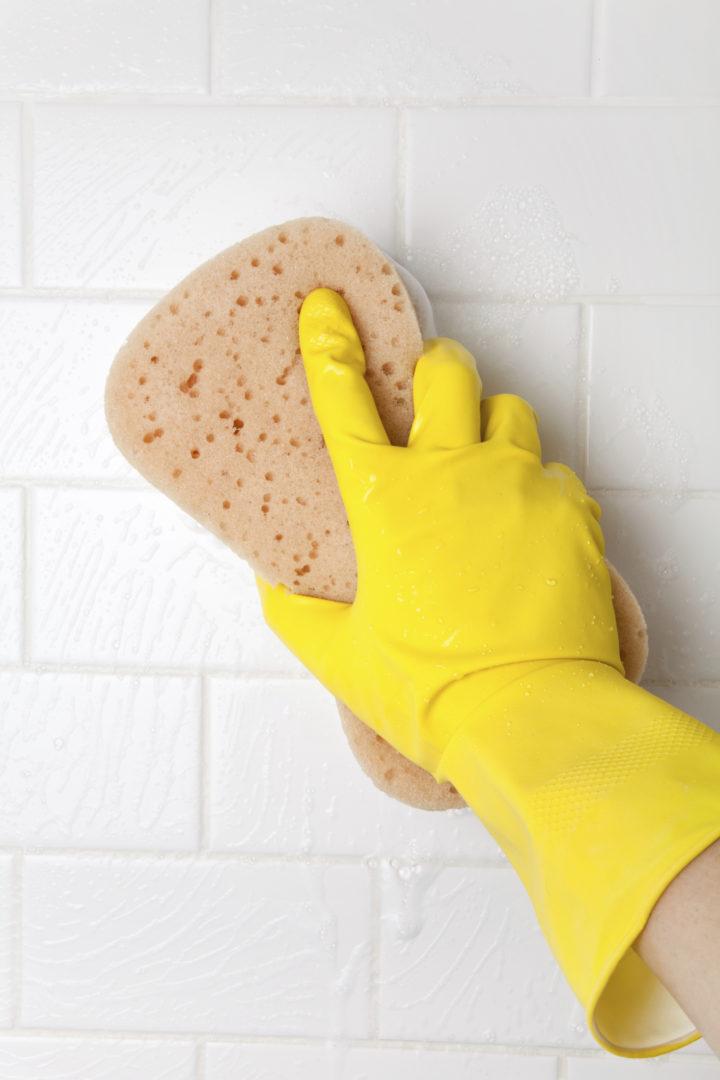 C mo eliminar el moho de las paredes limpiezas gredos - Como eliminar el moho ...