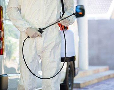 Servicios de control de plagas